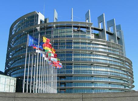 "EU Electronic ""Customs Decisions System"" per ""EU Trader Portal"" applicable in Be"