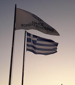 Greek flags.jpg