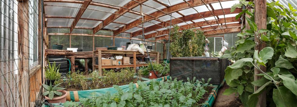 Greenhouse_Int.jpg