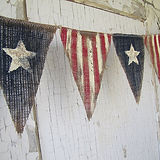 Star Spangled Stitchers Logo.jpg