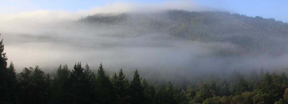 mountain_fog_03.JPG