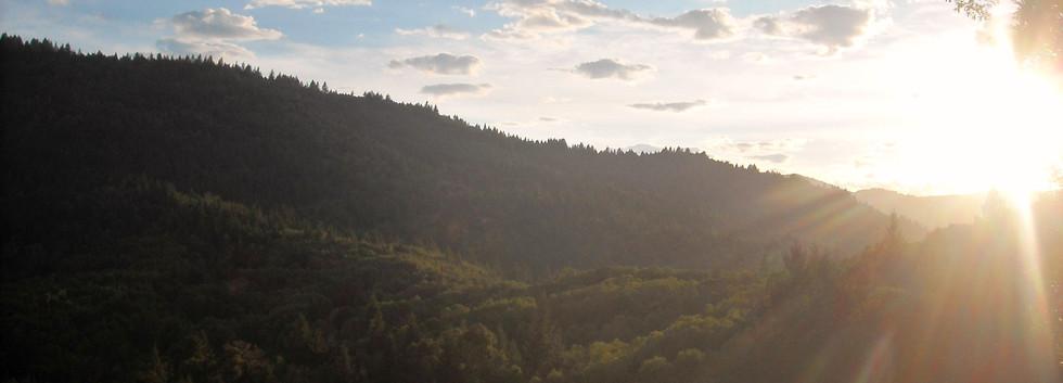 rc_landscape.JPG