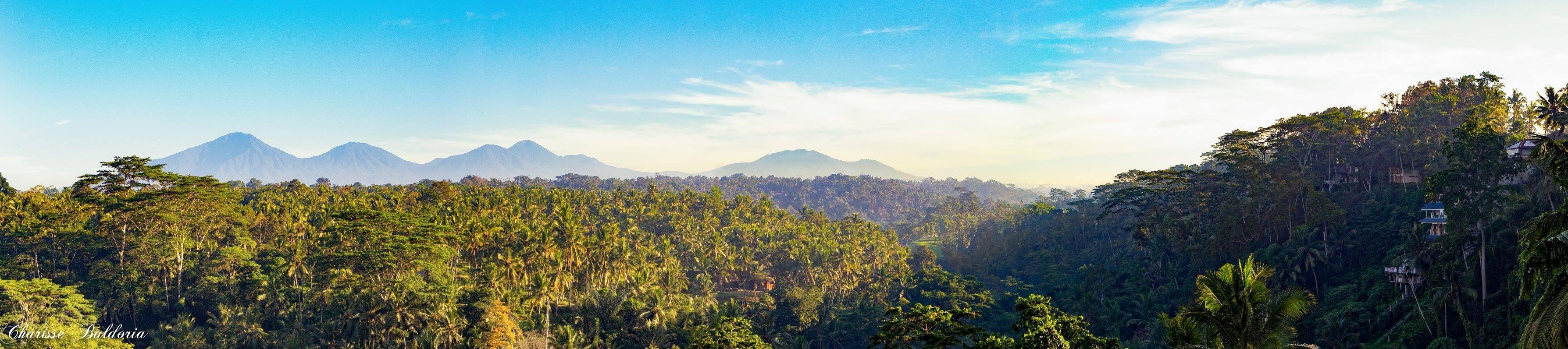 Sayan Ridge, Bali