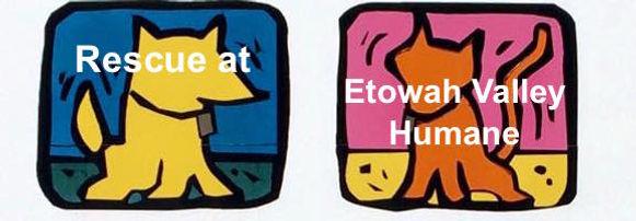 rescue_etowah.jpg