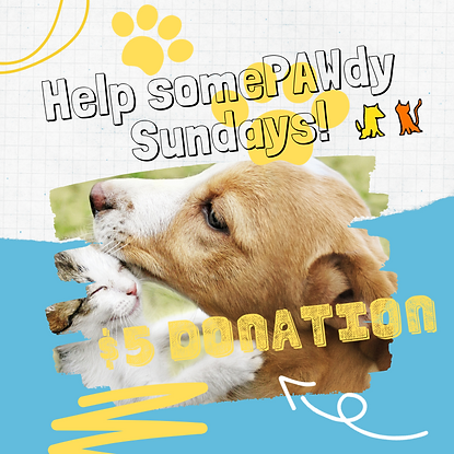 Help somePAWdy Sunday!PNG.png