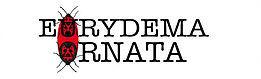 Revue de poésie Eurydema Ornata