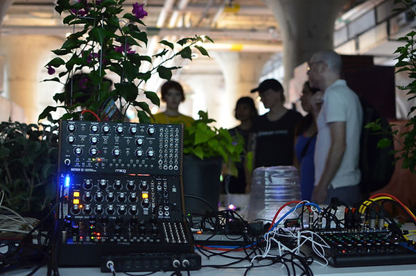 Moog synths translating biodata