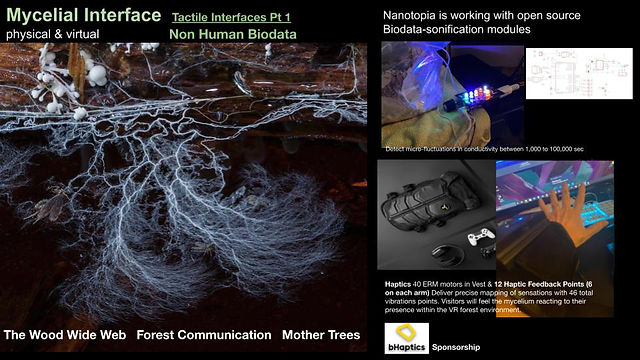 New Nature_ final presentation 3.1-3.jpg
