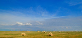 Bales-under-Saskatchewan-Sky.jpg