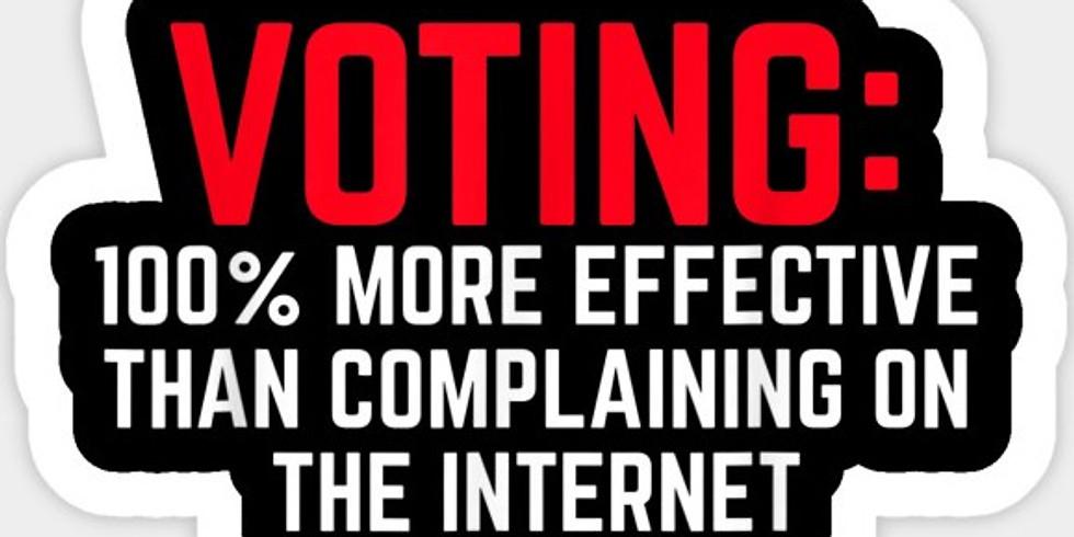 Vote Gone Viral with Zion Progress