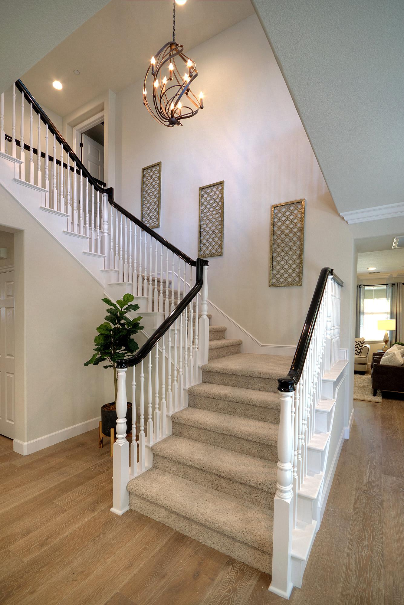 Drackert Carpet Staircase