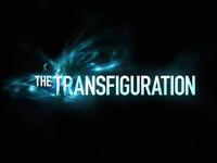 transfig.jpg