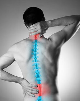 illustration-of-spine-on-man-with-back-p