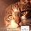 Thumbnail: Biofresh Super Premium para gatos adultos