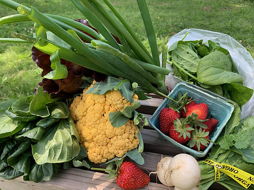 Best of Harvest Produce Box