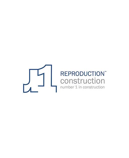 Project 8_r1 branding_Blue_1.jpg