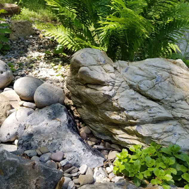 Pond outcropping