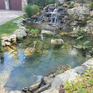 Pond managment