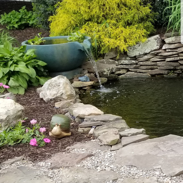 Pond accents