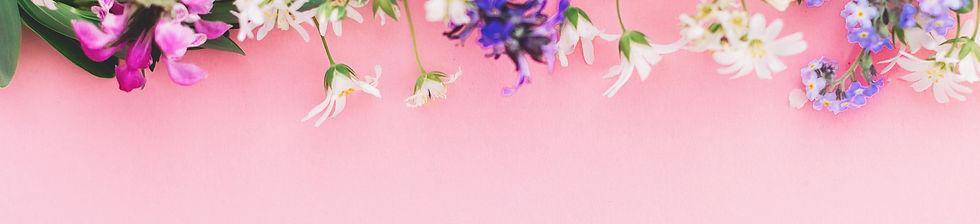 Flowers Spring Border_344488498.jpg