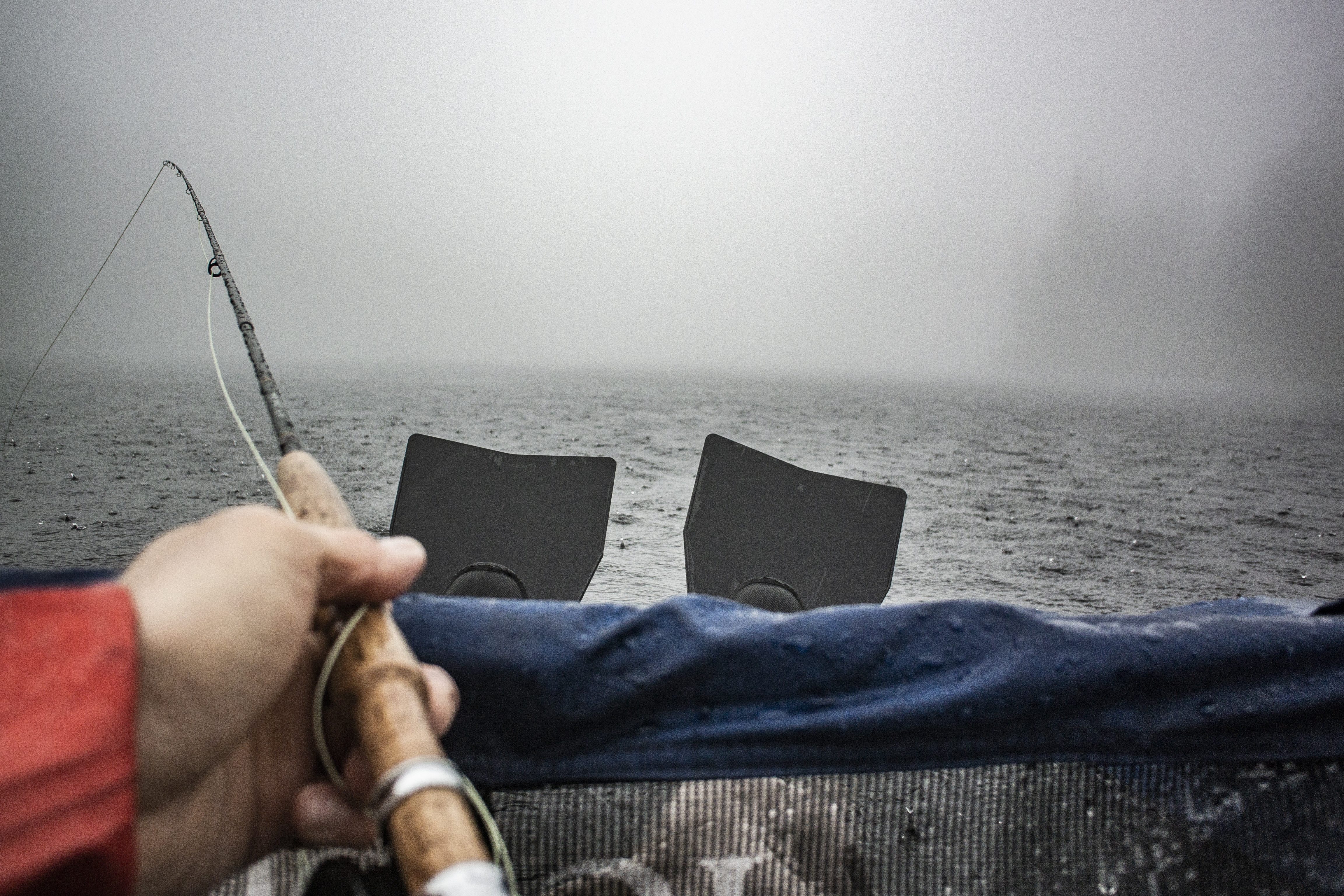 Fins and Fog
