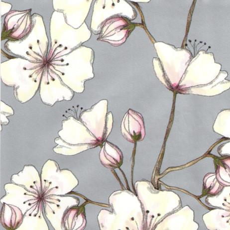 J6378 Cherry Blossom