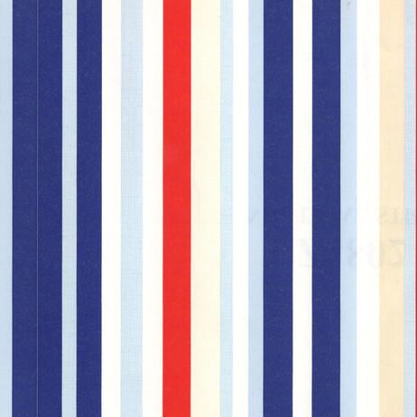 Z4802 Nautical Stripe