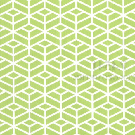 Z4541 Green Geometric