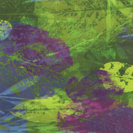 Z2325 Purple Leaves