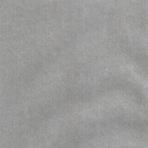GW7001 Silver Rib