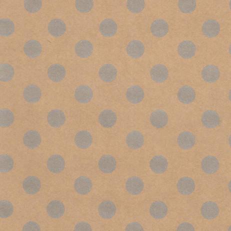 Y1011 Silver Dot Kraft