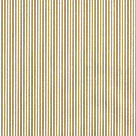 GW6X407 Gold White Stripe