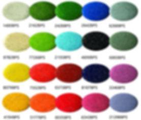 BPS-colour.jpg