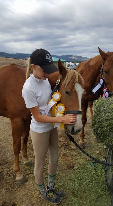 Horse, ribbons