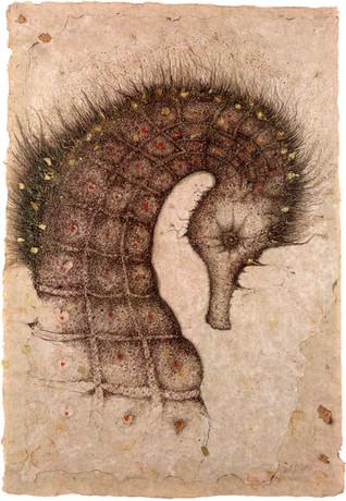 Sepia ink illustration hand finished with gold leaf.