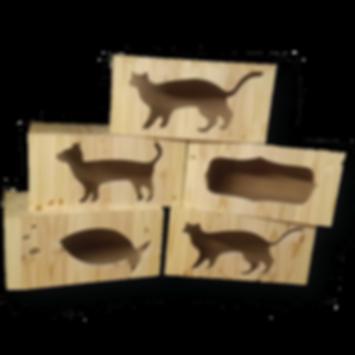 Cat wall box_edited.png