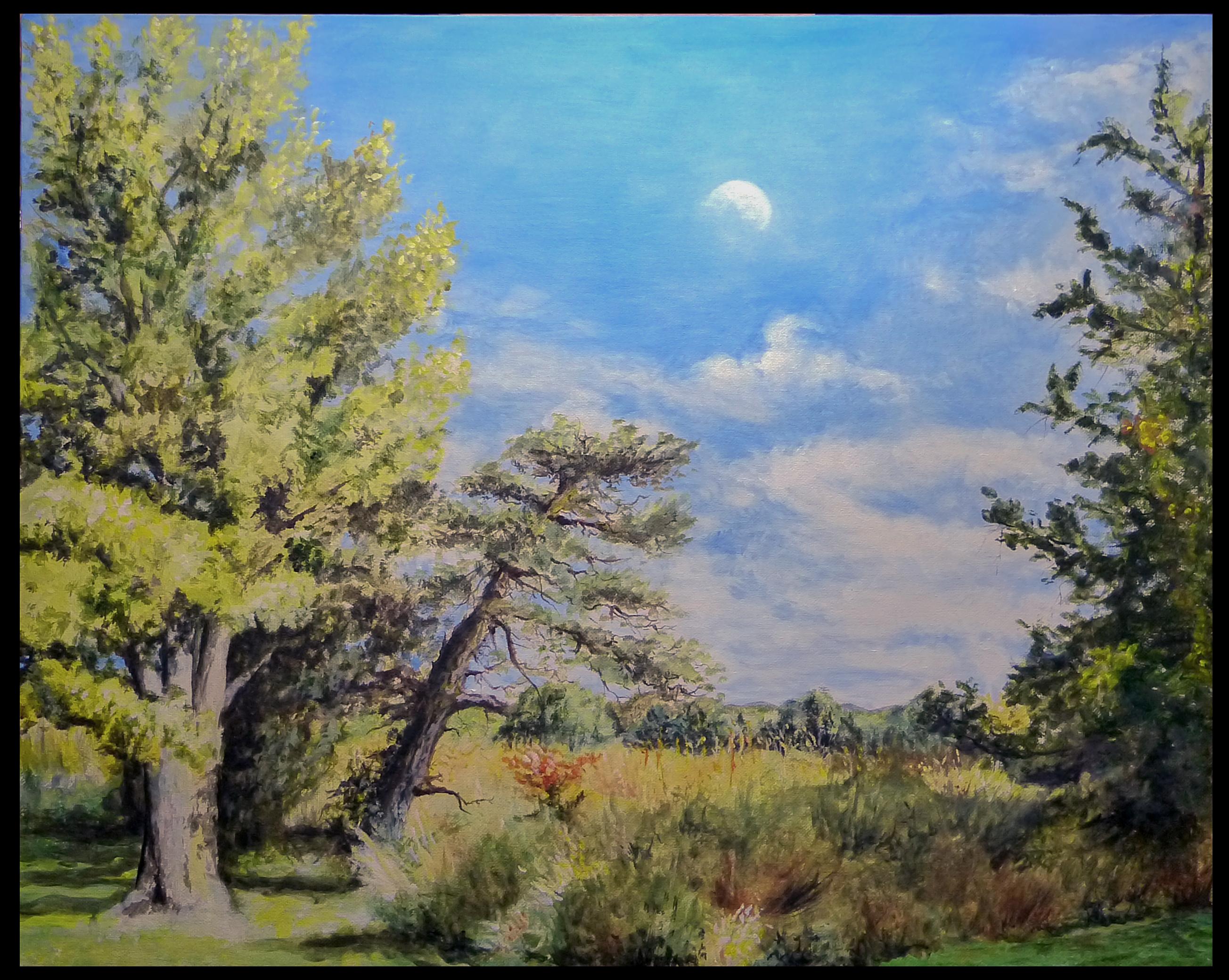 Bucks County Landscape plien aire