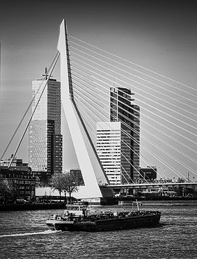 Rotterdam 'De Zwaan'