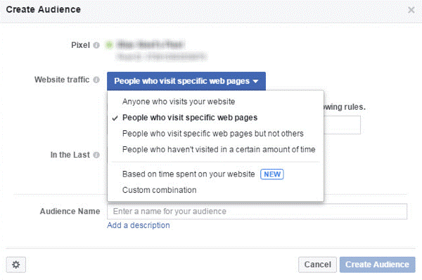 choose from a number of targeting options in the Website Traffic drop-down menu