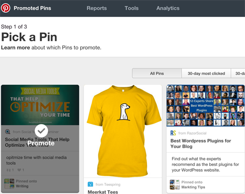 Promote your posts with social advertising like promoted pins.png