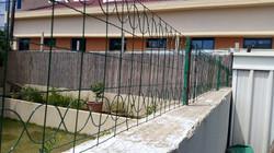 התקנת גדר ירוקה 3