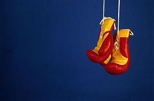 プロボクシンググローブ