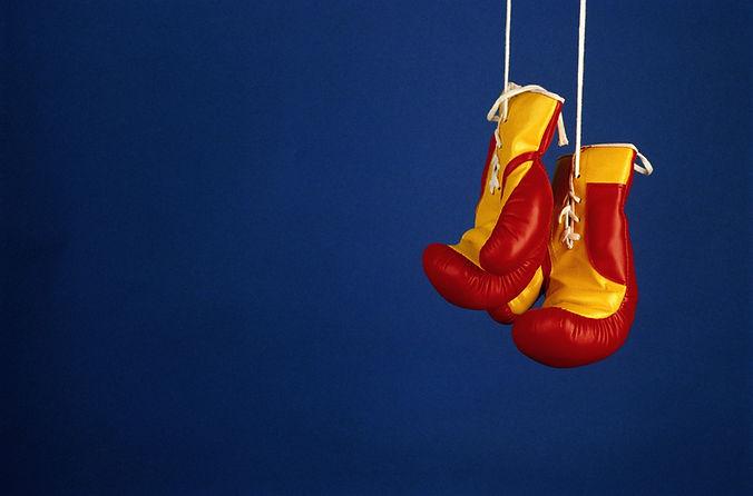 Pro guantes de boxeo