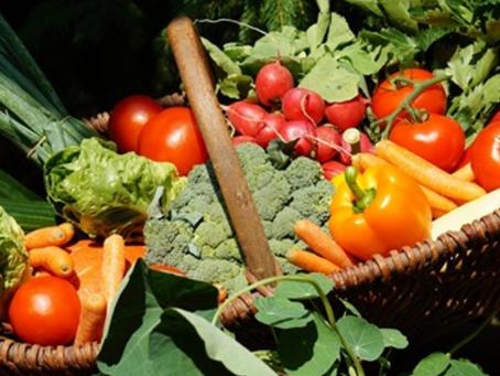 Vi presentiamo la dieta anti-rughe. Ecco tutti i cibi che combattono l'invecchiamento della pelle