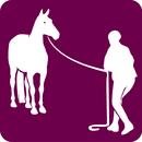 Logo-Equifeel_listitem_no_crop.png