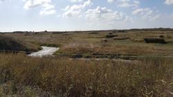 Randonnée à l'Ile d'Oléron