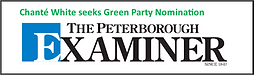 examiner logo nomination.png