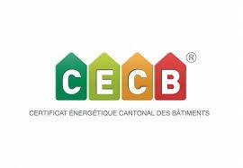 Zouai Tarek Expert CECB
