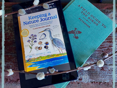 #WIPMondays Book Review: Keeping a Nature Journal
