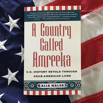 A Country Called Amreeka by Alia Malek